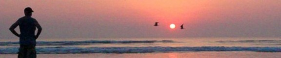 Thumbnail Man, birds and sunrise, web banner photo