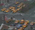Tons of Taxis, New York City, NY