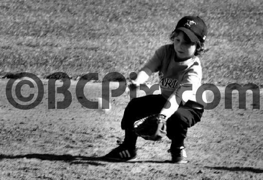 Product picture Tee ball player fields a grounder